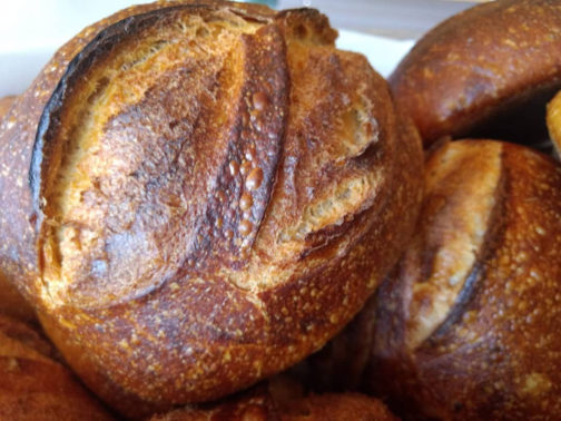 Pão de tomate assado com alho confitado