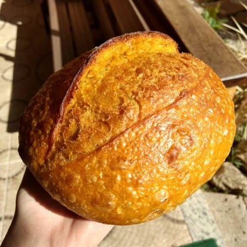 Pão de abóbora, mel e alecrim