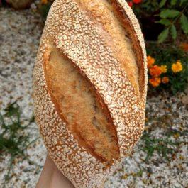 Pão de Tahine com óleo de gergelim tostado