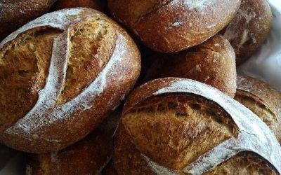 Pães caseiro de fermento natural