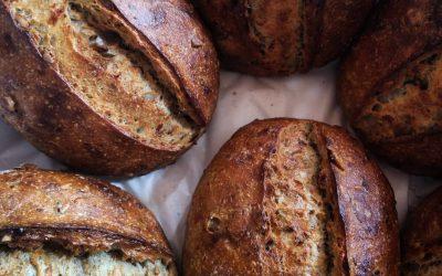 Pão de parmesão fresco