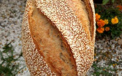 Pão de Tahine